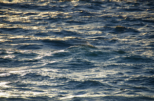 sea waves: sea waves -afternoon shot