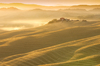 Tuscany Hills at Dawn: Rolling Hills with Farmhouse in Morning Fog at Sunrise, Tuscany - Italy
