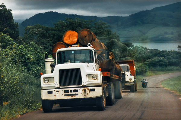 Trucks transporting Mahogany T: Old Trucks transporting Mahogany Trunks on the Pan-American Highway, Costa Rica, 1996. Analogue Shot