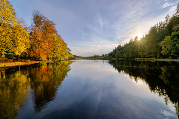 Lake in Autumn Forest: Peaceful little Lake between autumnal yellow and red Forest