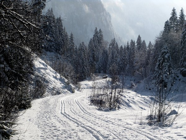 winter morning: Kleinarl,Austria