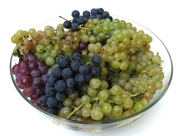 colorful grapes 3: none
