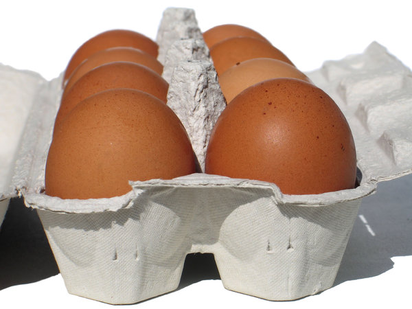 eggs carton 2: none