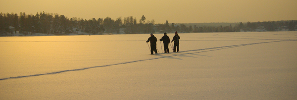 Nordic skiers on ice: no description