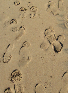 footprints in the sand: footprints near the waters edge.