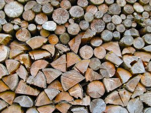 woodpile 1: detail of piled up wood with cobwebs