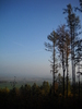landscape: a landscape view from the hill in Sudety mountains, Poland