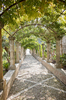 Pergola: A pergola, with fountains spraying at the far end, in a garden in Majorca, Balearic Islands, Spain.