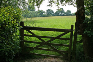 Field gate: A wooden gate leading into a meadow in East Sussex, England.