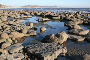 Rock pools 2: Rock pools on the beach near Lyme Regis, England.