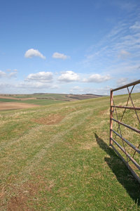 South Downs 8: Gateway into a field on the South Downs, West Sussex, England, in spring.