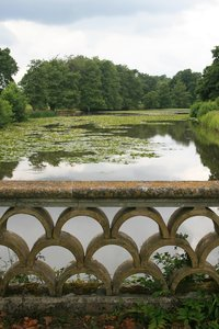 Ornamental lake: An ornamental lake with lilypads in the grounds of a country estate in West Sussex, England.