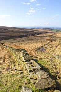 Moorland trail: A trail across moorland with drystone walls in northern England in early spring.