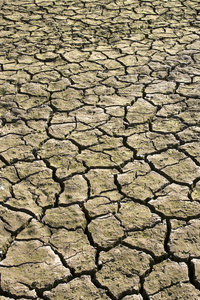 Parched ground: Sunbaked mud in a dried up reservoir