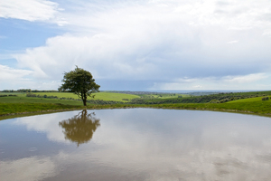 Dew pond: A dew pond on the South Downs, East Sussex, England. (View facing south - the coast in the distance.)