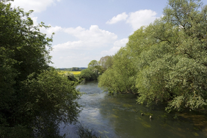 Tranquil river: The River Great Ouse, Bedfordshire, England.