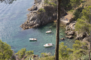 Three boats: Boats moored in a tiny cove on the Costa Brava, Spain.