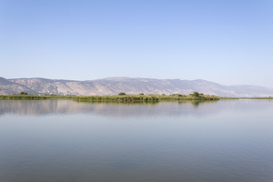 Israel lake: A lake in the Hula Valley, Israel.