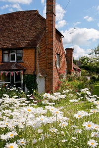 Old cottage garden: An old cottage garden in West Sussex, England.
