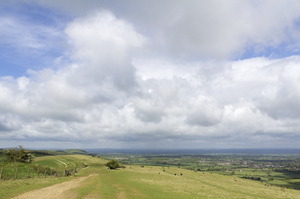 Landscape: Landscape of the South Downs, East Sussex, England.