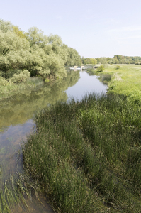 Peaceful river: A river in Bedfordshire, England.