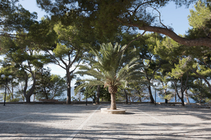 Shady piazza: A shaded piazza near the sea in Majorca, Balearic Islands, Spain.