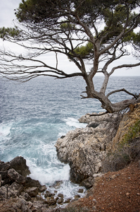Coastline: Wild coastline of Majorca, Balearic Islands, Spain.
