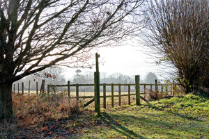 Countryside footpath: Start of a rural footpath in West Sussex, England, in winter.