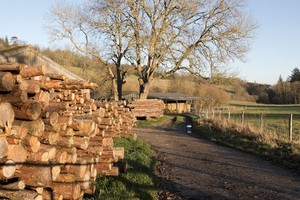 Winter farmyard: A farmyard in Surrey, England, in winter, with log piles.