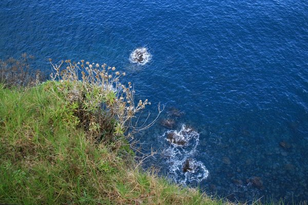 Looking down, down, down: Looking down over the edge of a cliff on the northern coast of Madeira.