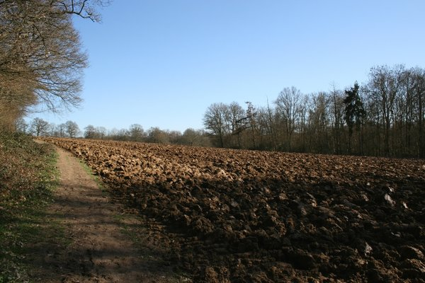 Ploughed field in spring: A ploughed field in early spring in West Sussex, England.