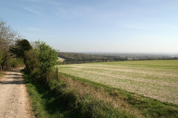 Long walk home: A rural track and fields in Sussex, England, where the South Downs meet the coastal plain.