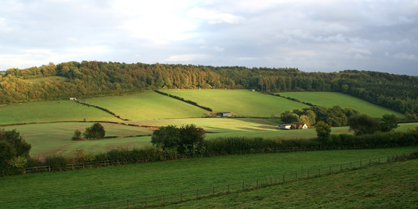 Evening light: Evening light in a farmed valley in Gloucestershire, England, in early autumn.