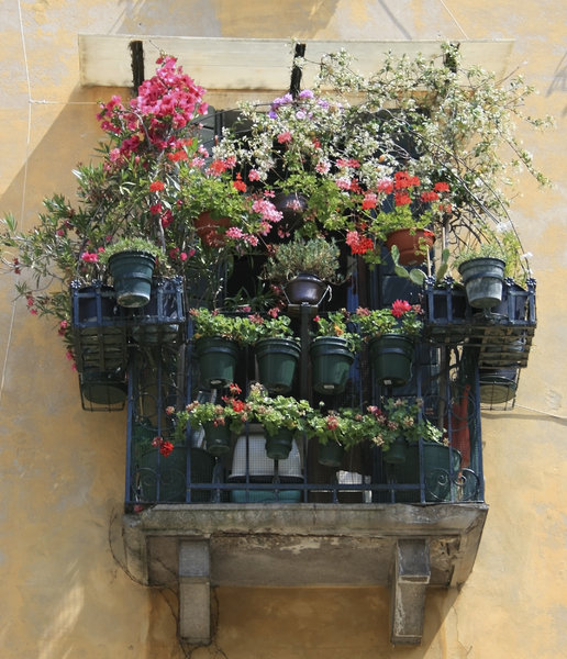 Flowerpots: Balcony of an old house in Italy with an abundance of potted flowers.