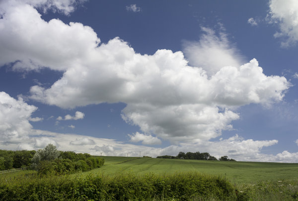 English countryside: Early summer landscape in Hampshire, England.