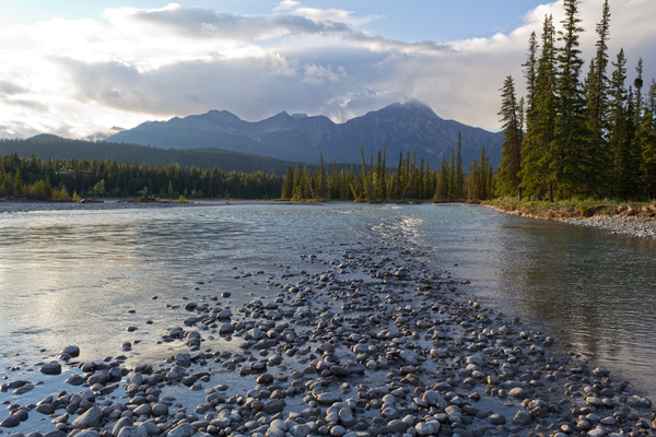 River shallows: River shallows in evening light in the Rockies, Canada.