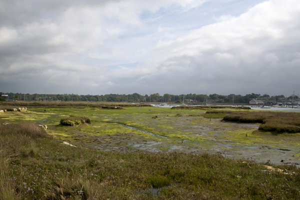 Estuary mudflats: Mudflats in an estuary at low tide in Hampshire, England.