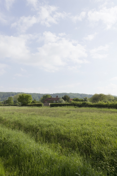 Rural cottage: A rural cottage on the edge of the South Downs, West Sussex, England.