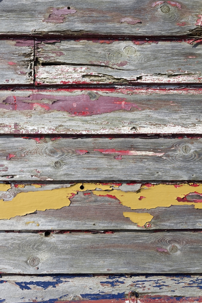 Grunge weatherboard texture: Old weatherboard with peeling paint.