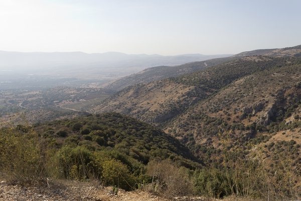 Golan Heights landscape: Landscape of the northern Golan Heights, Israel.