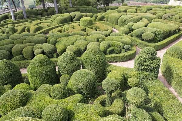 Topiary: Topiary in the Jardin de Marqueyssac, Dordogne, France. Photography in this garden was freely permitted.