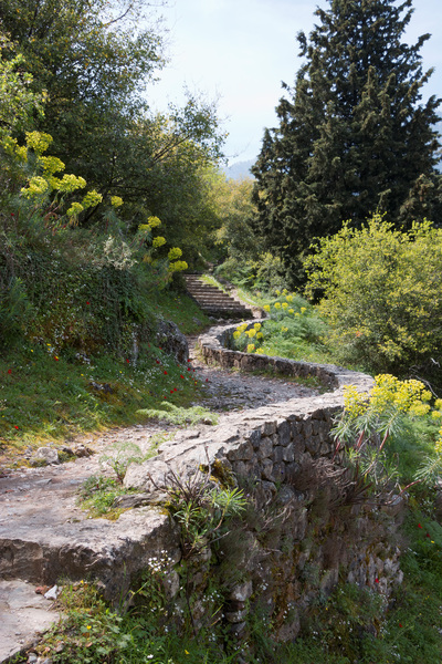 Ancient path and steps: An ancient stone path and steps up the ramparts of a fortress at Mystras, Greece, in spring. Photography at this UNESCO World Heritage site was freely permitted.