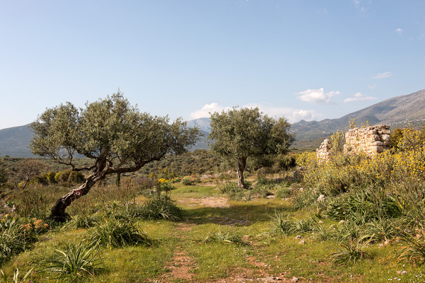 Greece landscape: Landscape and old ruins in southern Greece in spring.