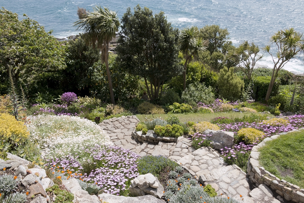 Rockery garden: The coastal rockery garden on St Michael's Mount, Cornwall, England, in spring. Photography of this National Trust property is freely permitted.