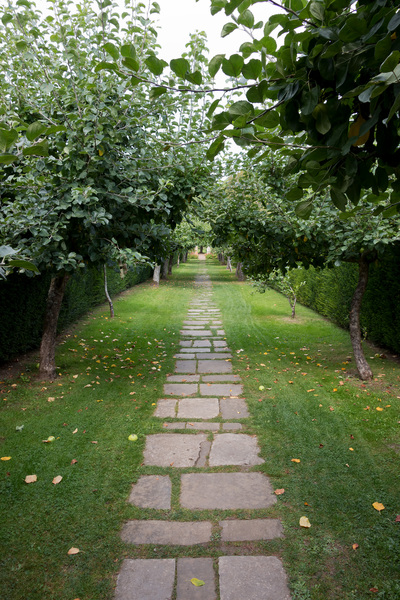 Apple tree path: A path between apple trees at Penshurst Place, a stately home in Kent, England. Photography in these grounds was freely permitted.