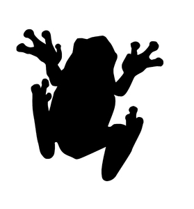Frog: A silhouette of an animal.