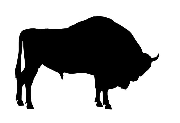 Wisent: A wisent silhouette.