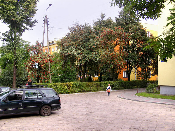 Block's yard: A housing yard in Łowicz.