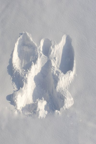 Snow angel: A angel made in the snow.Please mail me if you found it useful. Just to let me know!I would be extremely happy to see the final work even if you think it is nothing special! For me it is (and for my portfolio)!
