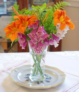 Wild Spring Flowers and Ferns: The flowers and ferns are all wild from the forest and made a wonderful arrangement for the table.